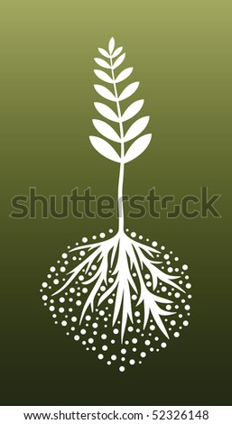 Plant and Roots (vector). In the gallery also available XXL jpeg version of this image.
