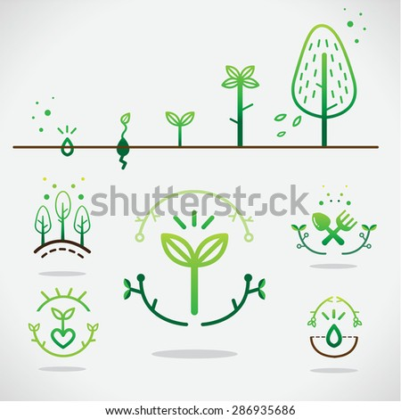Seed Growing Stock Photos, Images, & Pictures | Shutterstock