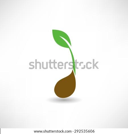 Plant icon - stock vector