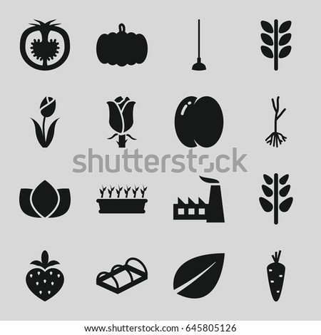 Plant icons set. set of 16 plant filled icons such as pumpkin, carrot, peach, lotus, leaf, factory, hoe, rose, sprout, greenohuse, tomato, strawberry, flower