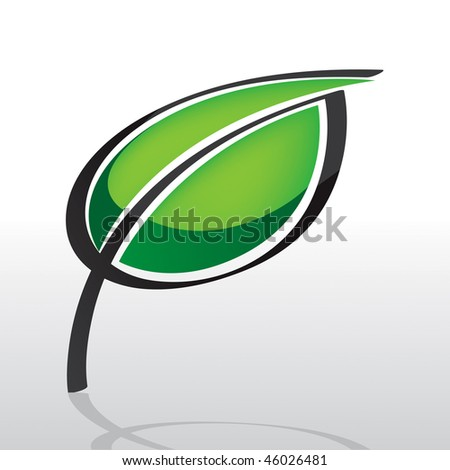 Plant Leaf Vector Drawing - stock vector