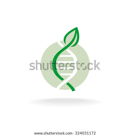 Plant nature genetic engineering symbol. Green leaf with stalk and DNA elements logo. - stock vector
