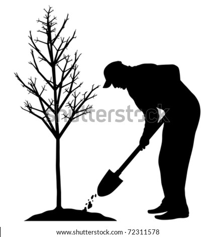 Planting a tree (vector) - stock vector