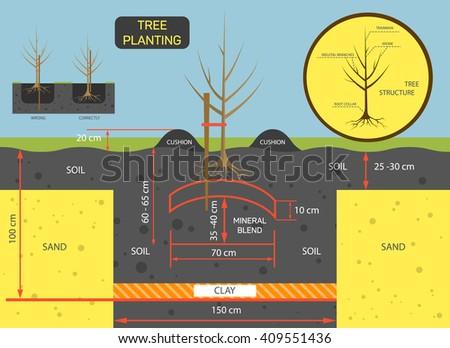 Planting tree concept vector illustration. Prepare soil for planting tree. - stock vector