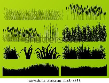 Plants, grass and flowers detailed silhouettes illustration collection background vector - stock vector