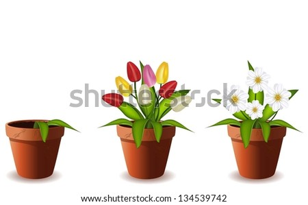 Plants in flowers pot.Vector illustration. - stock vector