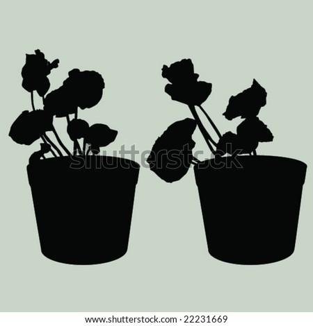 plants in pot - stock vector