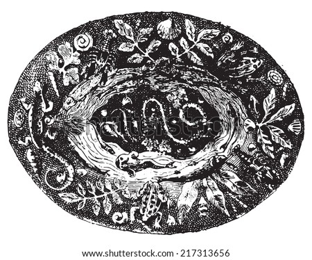 Platter. vintage engraved illustration. Dictionary of words and things - Larive and Fleury - 1895. - stock vector