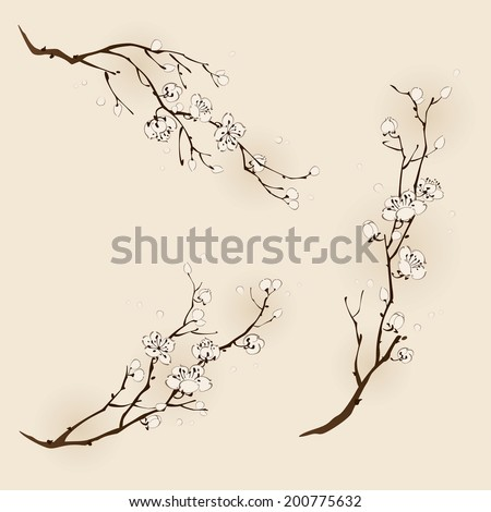 Plum blossom with line design in three different compositions - stock vector