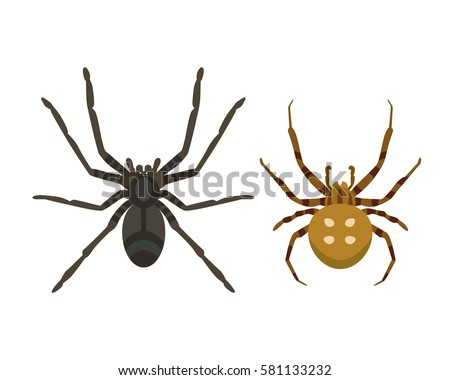 poisonous spider silhouette arachnid fear graphic flat scary animal poisonous design nature phobia insect danger horror - Phobia Halloween
