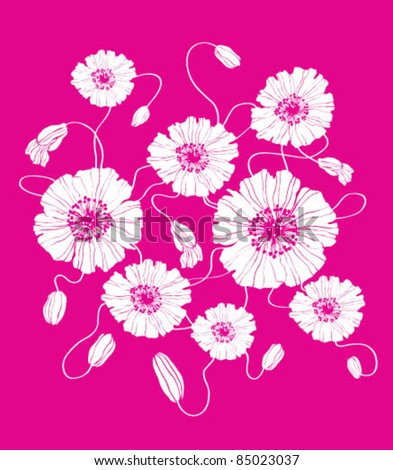 Poppies on pink - stock vector