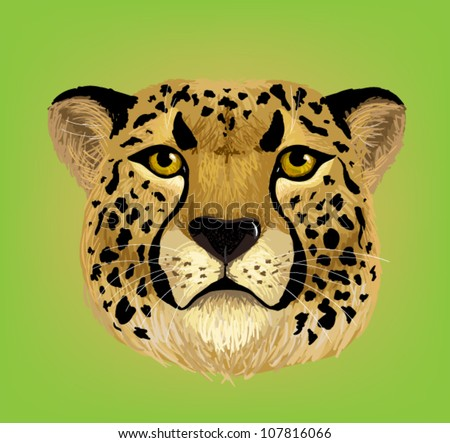 portrait of cheetah vector - stock vector