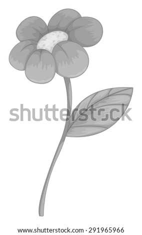 Poster of a single flower in gray color on a white background
