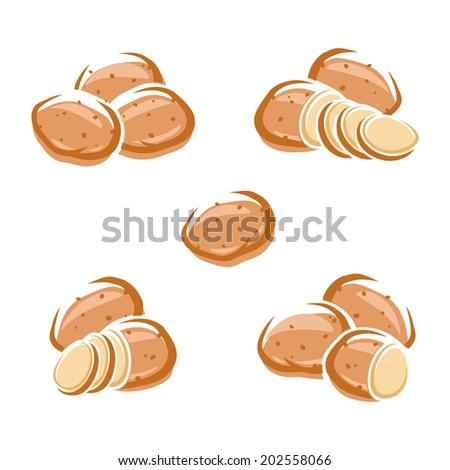 Potato set. Vector - stock vector