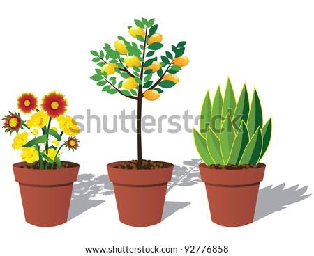 Potted Plants EPS 8 vector, grouped for easy editing, no open shapes or paths. - stock vector