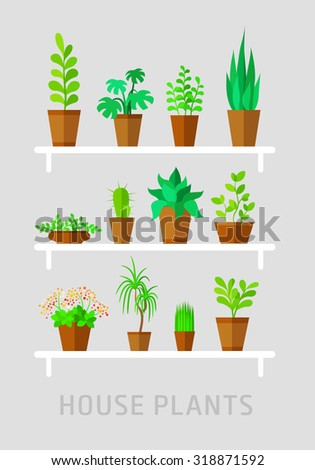 potted plants flat vector set on grey - stock vector