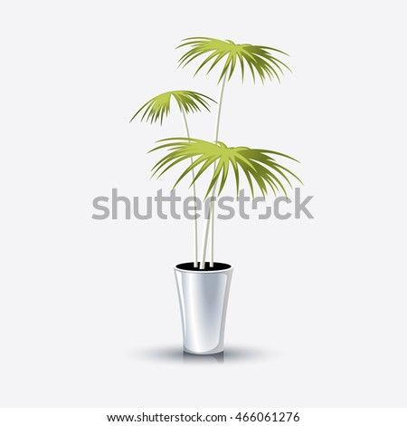 Potted plants in a white pot, Vector illustration in flat, cartoon style isolated from the background