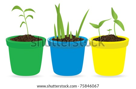 Potted seedling. Vector illustration - stock vector