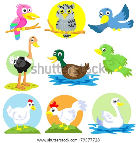 poultry bird set - stock vector