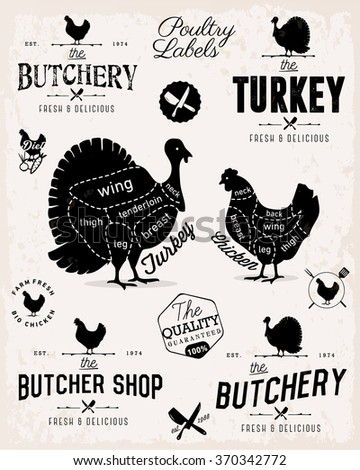 Poultry Cuts Diagram and Butchery Design Elements in Vintage Style - stock vector