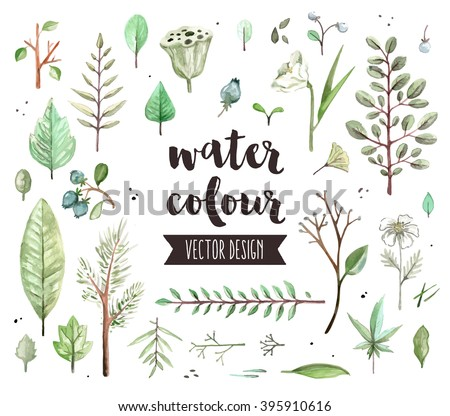 Premium quality watercolor icons set of various plant leaves, wild trees branch. Hand drawn realistic vector decoration with text lettering. Flat lay watercolor objects isolated on white background. - stock vector