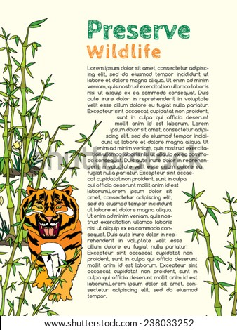 An Essay about Nature Protection
