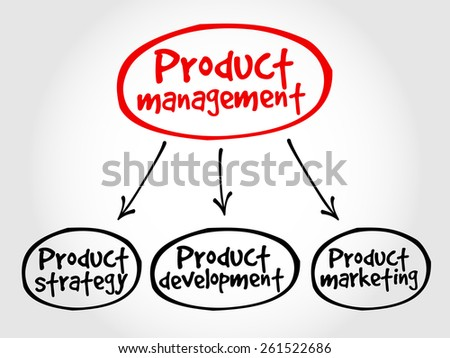 Product management mind map, business concept - stock vector