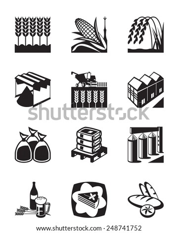 Production and processing of grain cereals - vector illustration - stock vector