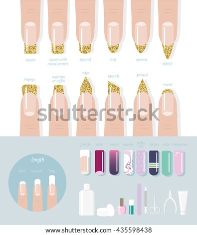 Professional Manicure Type Fashion Nail Shapes Stock Vector