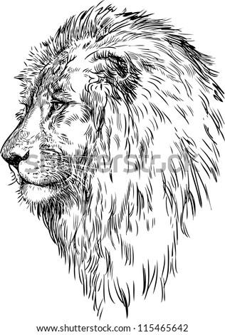 Roaring Lion Profile Tattoo Lion sketch Sto...
