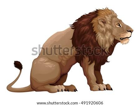 Lion sitting profile - photo#43