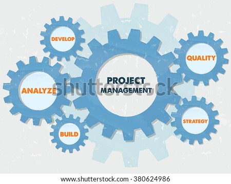 project management, develop, analyze, build, quality, strategy - text in blue grunge flat design gear wheels, business growth concept words, vector - stock vector