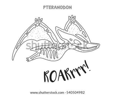 Pteranodon Skeleton Outline Drawing Fossil Pteranodon Stock Vector ...