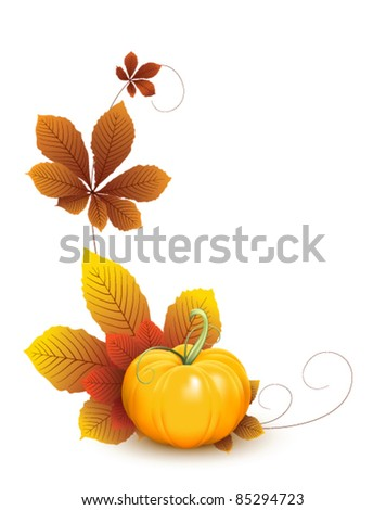 Pumpkin and autumn leaves, elements for your design.  Fruit and vegetable collection - stock vector