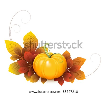 Pumpkin and falling autumn leaves, elements for your design. Fruit and vegetable collection - stock vector