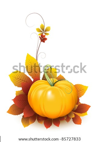 Pumpkin and falling autumn leaves, elements for your design. Fruit and vegetable collection. Raster version available in my portfolio - stock vector