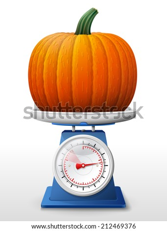 Pumpkin fruit on scale pan. Weighing winter squash on scales. Qualitative vector (EPS-10) illustration for agriculture, vegetables, cooking, halloween, gastronomy, thanksgiving, olericulture, etc - stock vector