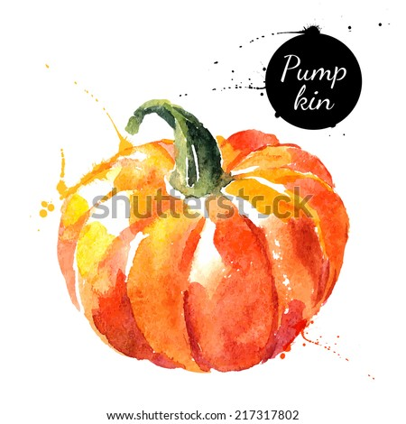 Pumpkin. Hand drawn watercolor painting on white background. Vector illustration - stock vector