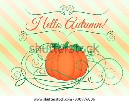 Pumpkin illustration, vector
