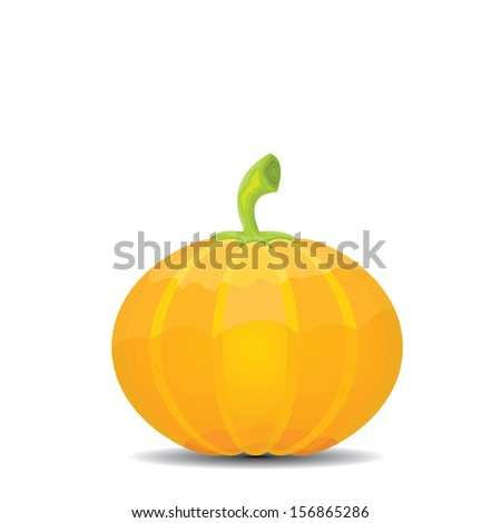 Pumpkin isolated on white background. Realistic vector illustration. - stock vector