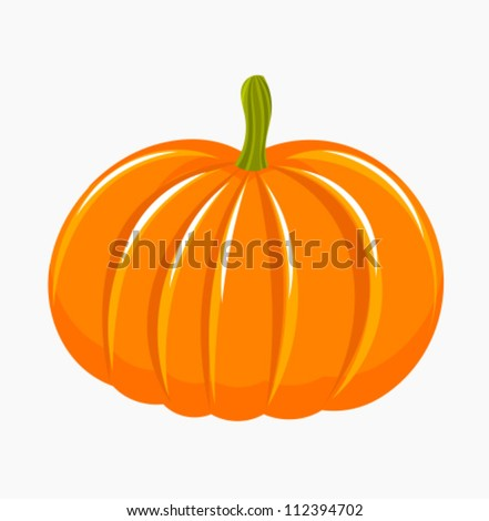 Pumpkin isolated - vector illustration - stock vector