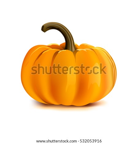 Pumpkin on white background. Vector illustration.