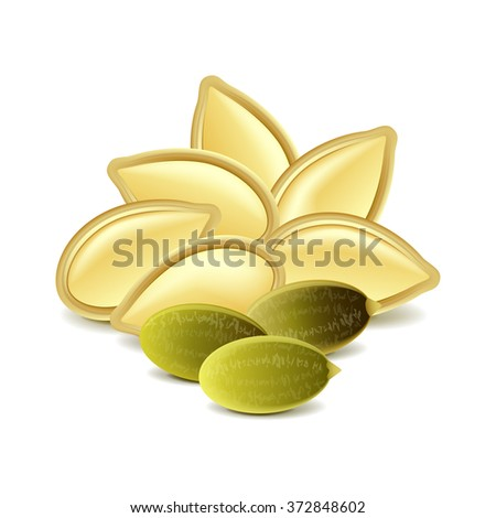 Pumpkin seeds isolated on white photo-realistic vector illustration - stock vector