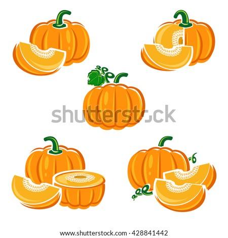 Pumpkin set. Vector - stock vector
