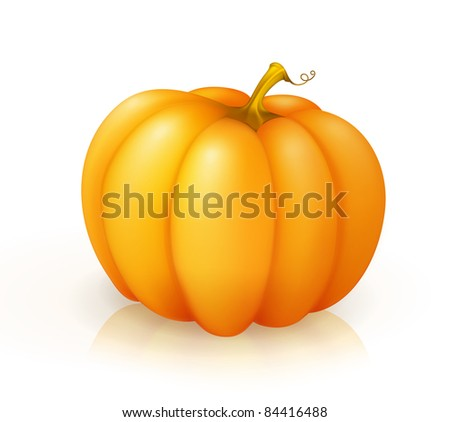 Pumpkin, vector - stock vector