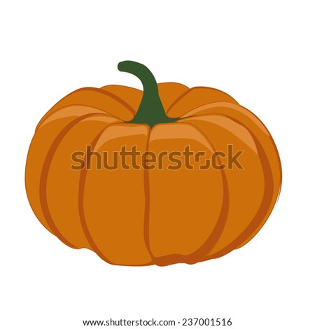 Pumpkin vegetable, pumpkin isolated, big pumpkin, halloween - stock vector