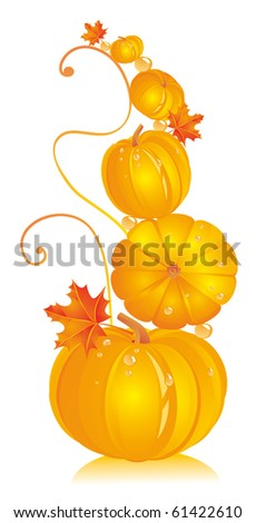 Pumpkins in different kinds with autumn leaves of a maple - stock vector