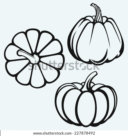 Pumpkins isolated on blue background - stock vector