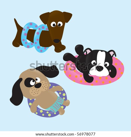 Puppy pool party - stock vector