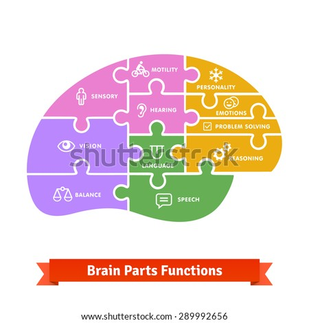 Puzzle tiled brain functions shilouette with icons. Flat colourful vector. - stock vector